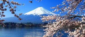 Viaggi dell'Elefante e Fabio Massimo Fioravanti insieme per il Giappone