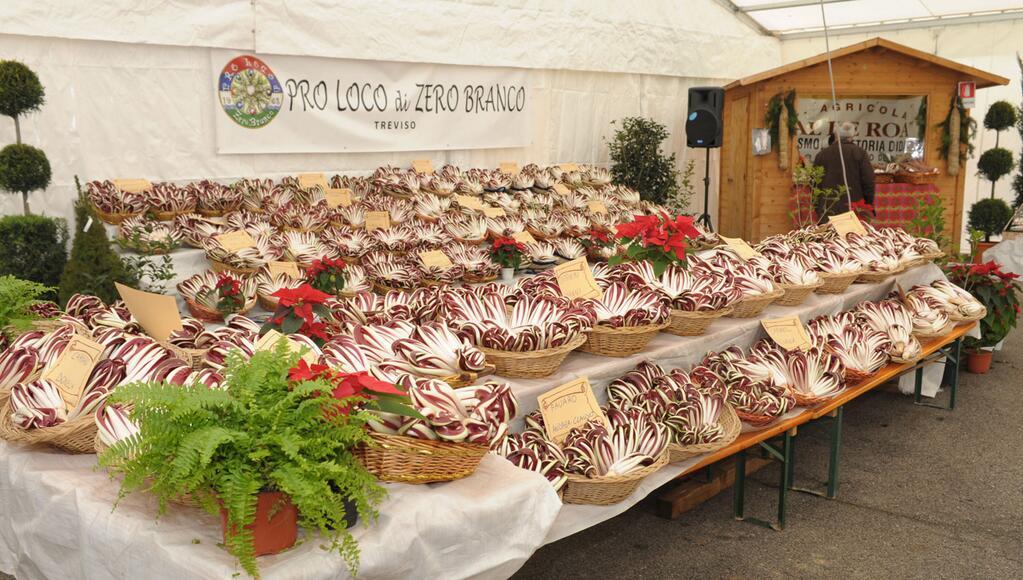 Treviso celebra l 39 antica mostra del radicchio rosso igp for Mostra treviso