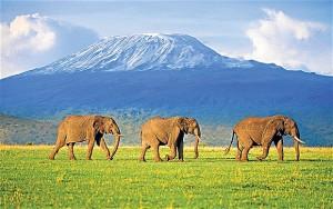 Kenya, decolla il training per agenzie di viaggio