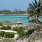 Mappamondo incrementa gli investimenti su Cuba