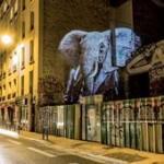 Il Kenya si promuove nelle città italiane con GeoTravel Network