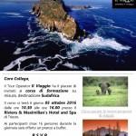Formazione Sudafrica con Il Viaggio Journeys & Voyages