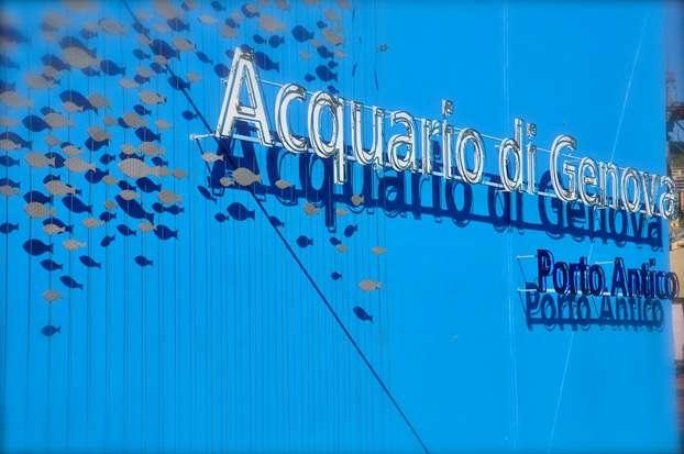 acquario genova, pacchetto soggiorno family dream per carnevale - Pacchetti Soggiorno Acquario Di Genova