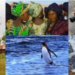 Il Tucano Viaggi Ricerca a Milano con i fotogiornalisti Neos