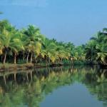 Go Asia: Capodanno nel Sud dell'India