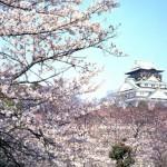 Promozione targata Ana per scoprire il Giappone