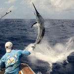 In Messico la migliore pesca d'altura
