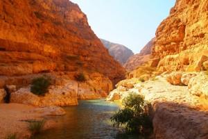 Wadi Tiwi bis