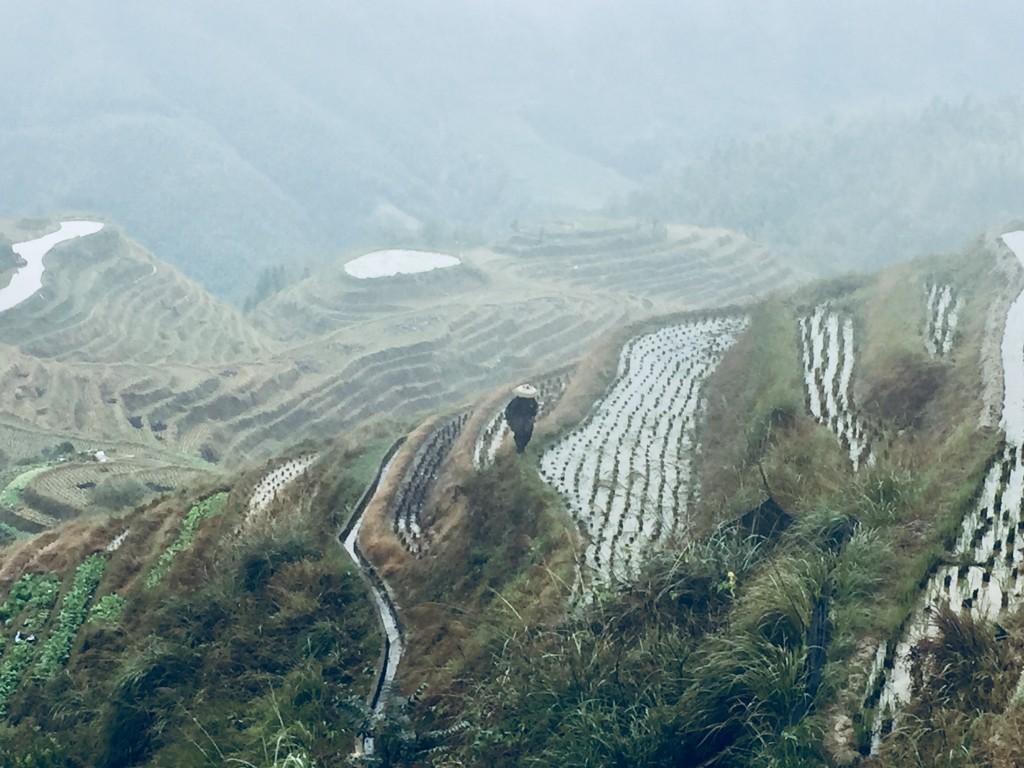 Dgv Travel: viaggi in Cina da specialisti