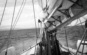 Globesailor: al via il concorso per navigare a bordo di Tara