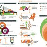 Olanda: la promozione in Italia prosegue, in linea con Perspective 2030