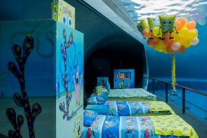 Acquario di Genova, una notte con Spongebob nel padigione dei cetacei