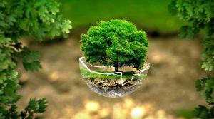 Anche il Gruppo Duetorrihotels sceglie la linea della sostenibilità