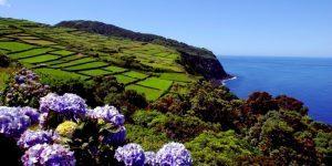 Portogallo d'autunno fra musica, natura e gastronomia