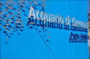 """L'Acquario di Genova presenta la nuova vasca """"Coste del nord Pacifico"""""""