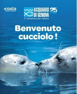 """Acquario di Genova e Alpitour protagonisti di """"Dai un nome al cucciolo di foca"""""""