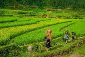 Asiatica Travel: il 12 febbraio un reportage sul Vietnam