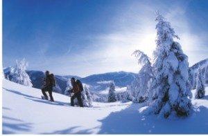 Carinzia: la neve, le piste e l'offerta del TopSkiPass 2019