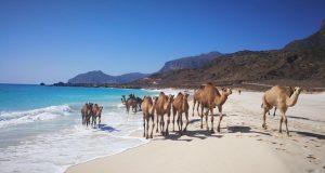 Originaltour presenta i nuovi tour di gruppo in Oman