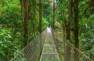 """Costa Rica e """"Cruise & Relax"""" ai Caraibi tra le novità di Eden Made"""
