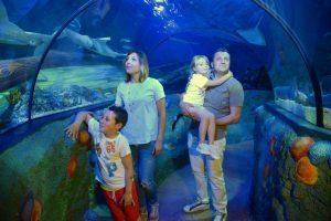 Gardaland Sea Life festeggia il suo decimo compleanno