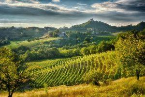 Destinazione Gavi, tra il mar Ligure e il Monferrato si promuove il turismo chic e country
