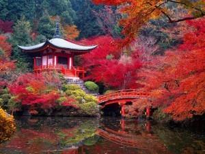 Kyoto vara nuovi provvedimenti per fronteggiare l'overtourism