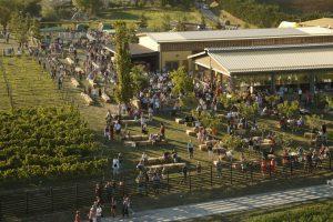 Al Rural Festival di Rivalta di Lesignano dè Bagni (Parma) agricoltori e allevatori da tre regioni
