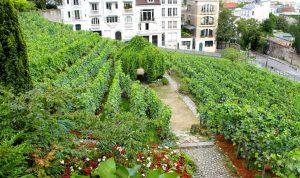 Parigi e le meraviglie del 18° arrondissement da Montmatre a Pigalle