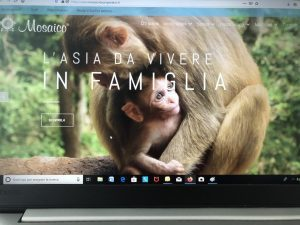Mosaico, un nuovo sito per evidenziare l'offerta