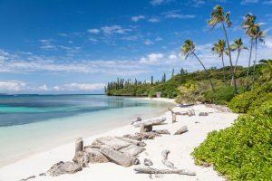 Nuova Caledonia, confronto con gli specialisti al Meet the Pacific