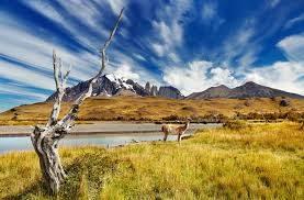 Tour2000AmericaLatina in viaggio fra le due Patagonie