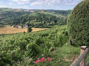 Alto Monferrato, con Thinkserravalle le proposte per un esperienza sul territorio