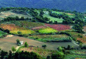 Sardinia Ferries rilancia le promozioni per Autunno in Barbagia