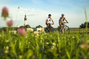Salisburghese, le proposte per cicloturisti e bikers