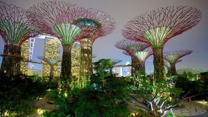 Singapore, i 5 luoghi da non perdere per fare il pieno di like