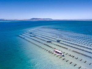 Tasting Australia 2019, una oasi del cibo dall'altra parte del mondo
