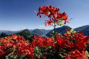 Ticino Turismo promuove il territorio con il progetto Ticino Challenge