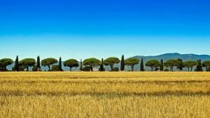 Toscana, 450 eventi sul territorio nel periodo dell'Expo