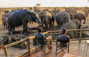 Gli Imvelo Safari Lodges (Zimbabwe) arrivano sul mercato italiano