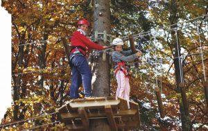 Parco avventura Sella Nevea, novità ed eventi del Forest Camp