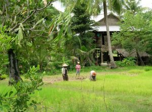 In Cambogia con Asiatica Travel: il reportage oggi online su Travel Quotidiano