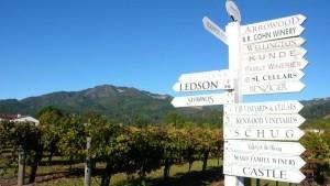 Visit California, eventi ed itinerari in bicicletta per scoprire la destinazione