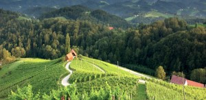 "Slovenia ""nazione dell'anno"" è pluripremiata agli Awards 2020 food and travel Italia"