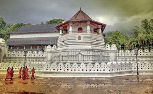 Ceylon Roots: Sri Lanka verso la normalità, con fiducia