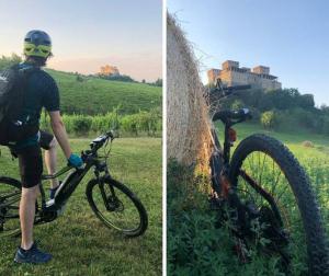 Inc Hotels: pedalare tra castelli, vigneti e gli eventi di Parma Capitale della cultura 2020+2021