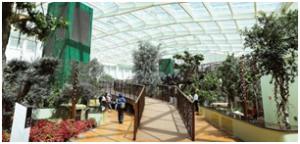 Dubai, dal Shindagha museum al parco acquatico Hatta Wadi Hub le novità della destinazione