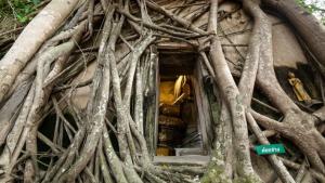 Thailandia, alla scoperta di Samut Songkhram e del suo tempio dimenticato Wat Bang Kung