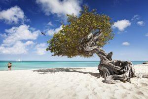 Aruba avvia il piano vaccinale che coprirà l'intera popolazione entro l'estate
