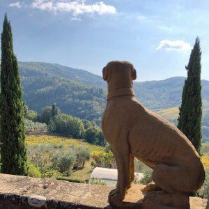 Toscana, al via il percorso per inserire il Chianti nel Patrimonio Unesco
